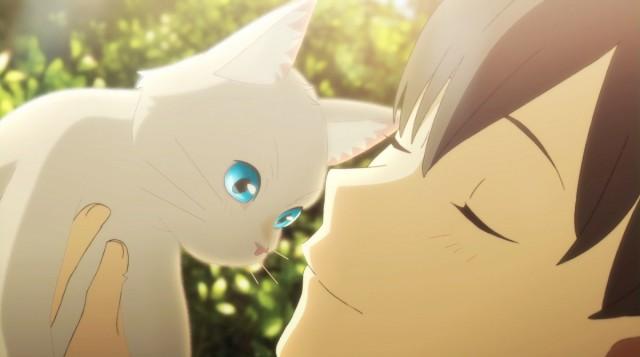 人間を捨てて猫として生きるのか…?新作アニメ映画『泣きたい私は猫をかぶる』新たな場面写真を公開