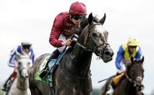欧州年度代表馬、G1レース4連勝のロアリングライオンが選出