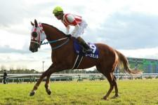 高松宮記念はスプリンター系の桜花賞馬レーヌミノル「復活の舞台」だ