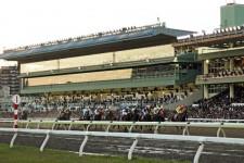 中央初開催のJBC3競走。「アウェー」に臨む地方馬こそがオイシイ