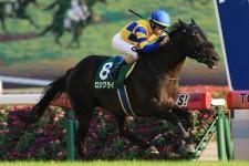 マイルCSでは、直前の重賞勝ち馬と4番人気の馬が幸運を運んでくる