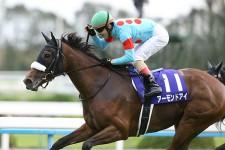 女王アーモンドアイがジャパンC出走。牡馬に勝利して歴史に名を刻め