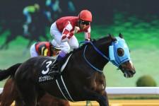 平成最後の有馬記念で、「レジェンド」オジュウチョウサンに馳せる夢