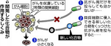 メラノーマに効果か 化合物開発