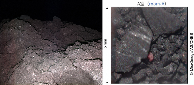 リュウグウ表層と岩石サンプル